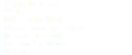 - Selling the drama - Weak - How you remind me - Are you gonna go my way - Message in a bottle - Everlong / Pretender - Poison